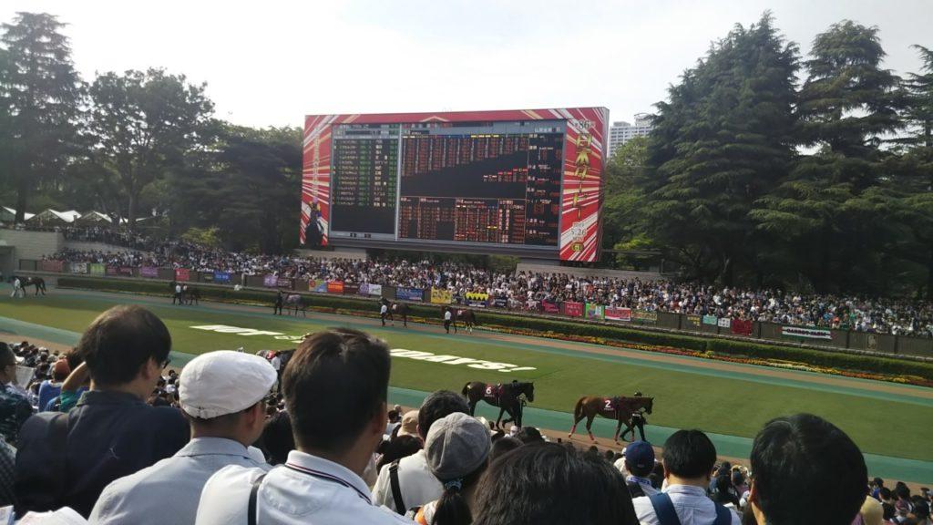 日本ダービー2019 東京競馬場 パドック
